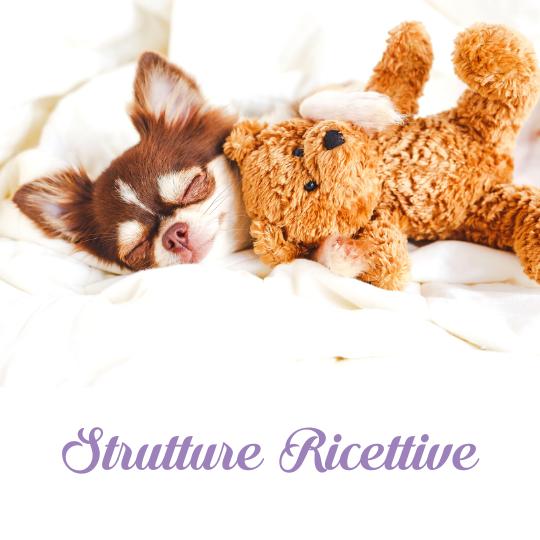 Strutture Ricettive