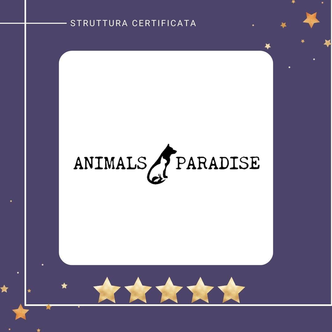 animal_paradise_cremazioni_animali