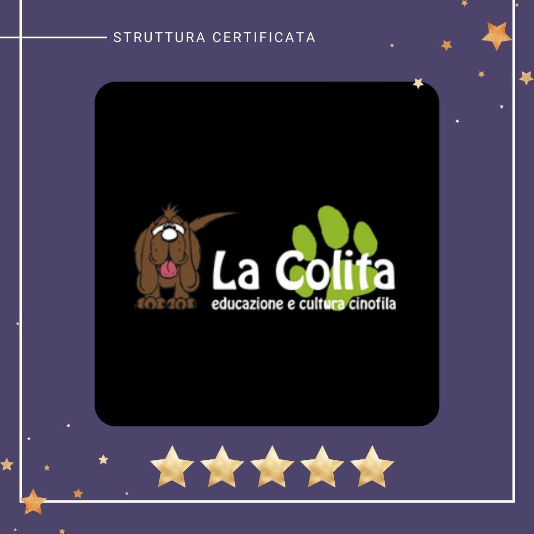 la_colita_centro_cinofilo_pordenone
