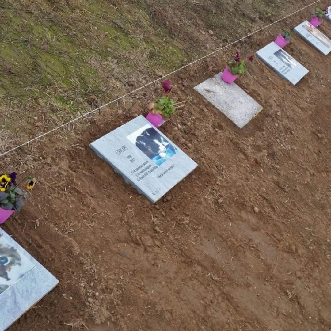 cimitero_per_animali_milano