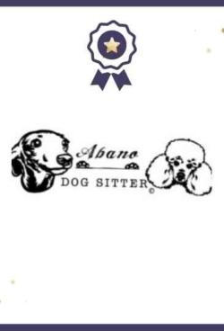 abano_dog_sitter